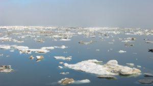 Micro mondes : Evaporated landscapes