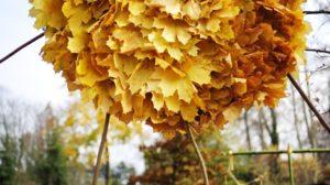 Manifesterre et Fête des feuilles