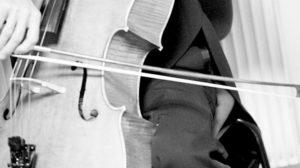 Journée du violoncelle