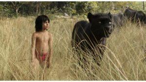 Ciné-ma différence : Le livre de la jungle