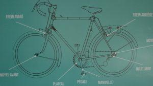 Arcimboldo vélo