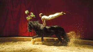 Cirque équestre