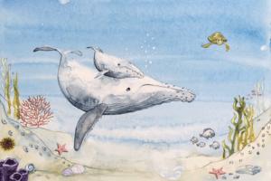 Conte baleine Musée des confluences